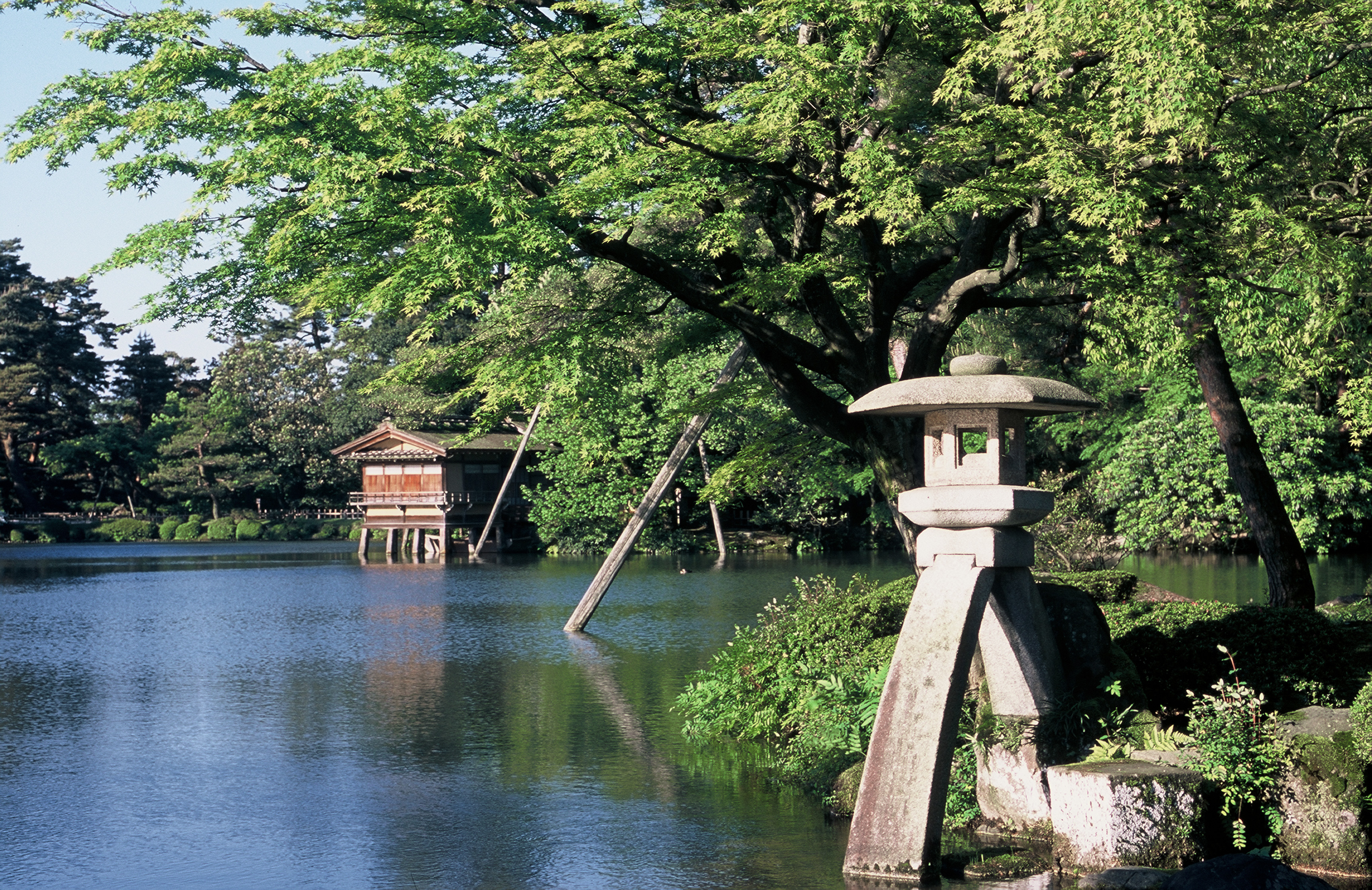 金沢白鳥路ホテル山楽会場写真 5